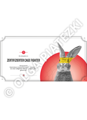 zertifikat-cage-fighter